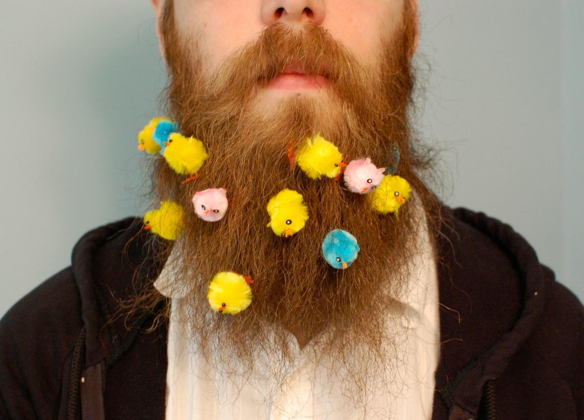 chicks in beard