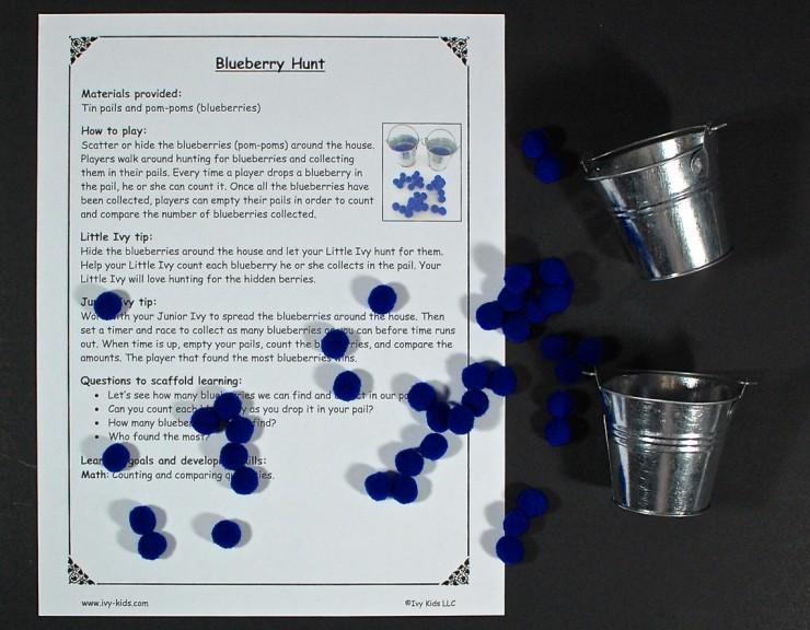 blueberry hunt