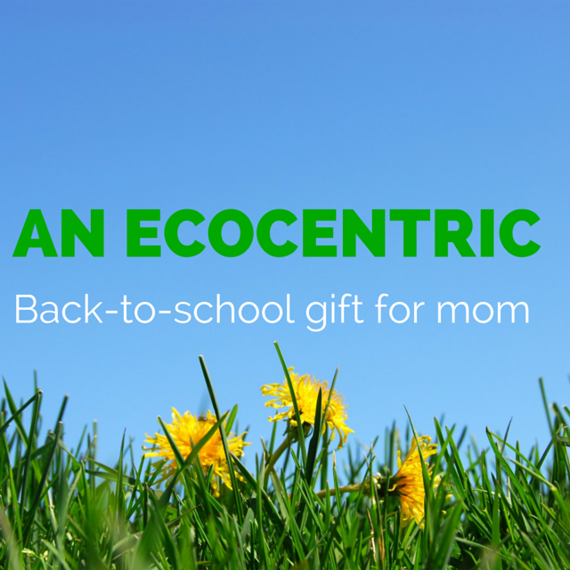 Ecocentric mom free box