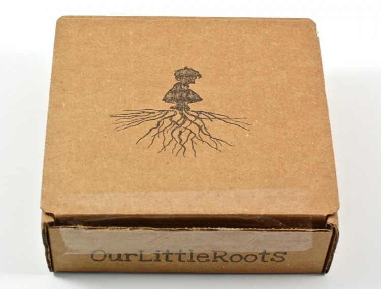 Our Little Roots box
