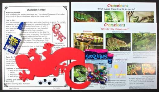 chameleon craft