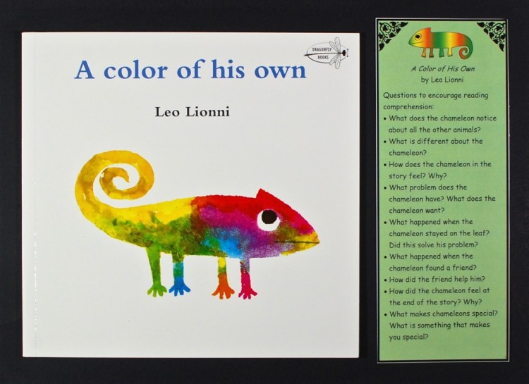 A Color of his Own book