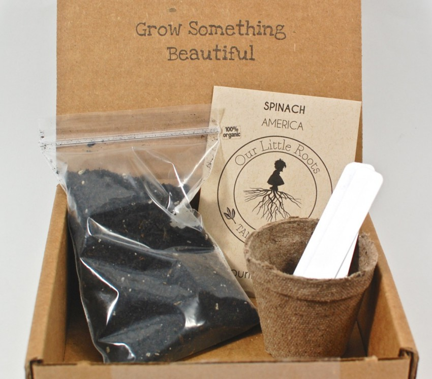 December 2015 Our Little Roots box