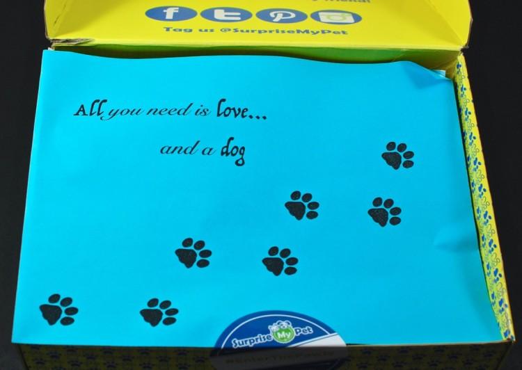 Surprise My Pet box review