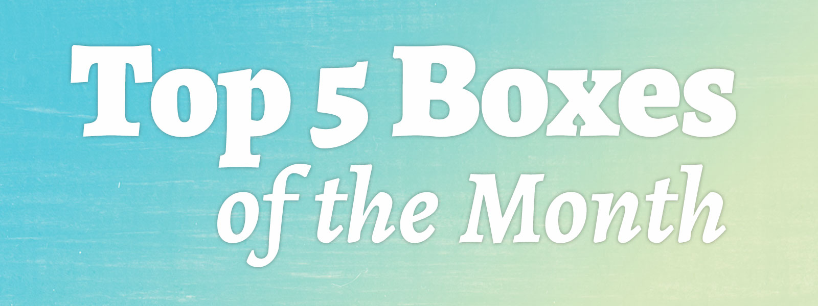 Top 5 Subscription Boxes of the Month