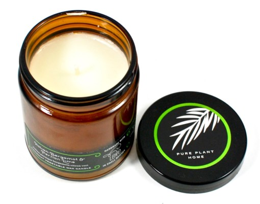 pure plant home persian lime candle