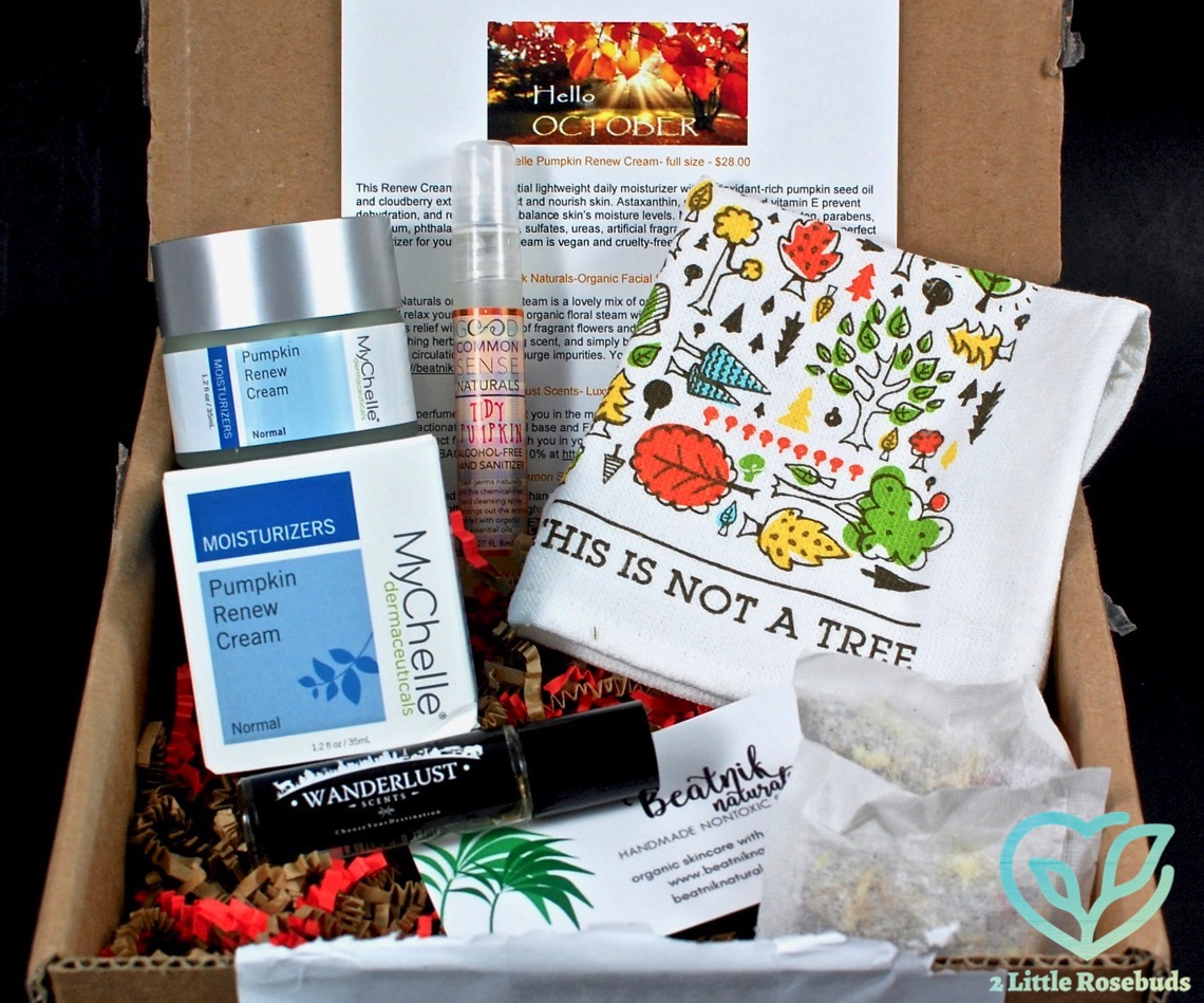 October 2016 Kloverbox review