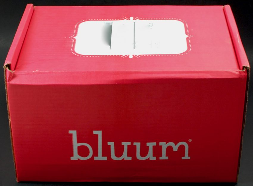 bluum box review