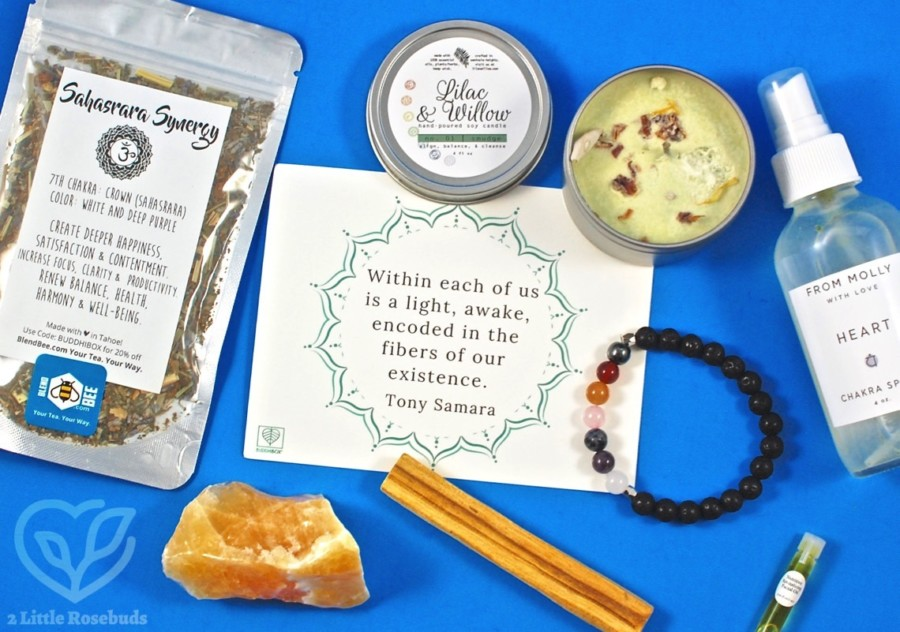 August 2017 BuddhiBox review