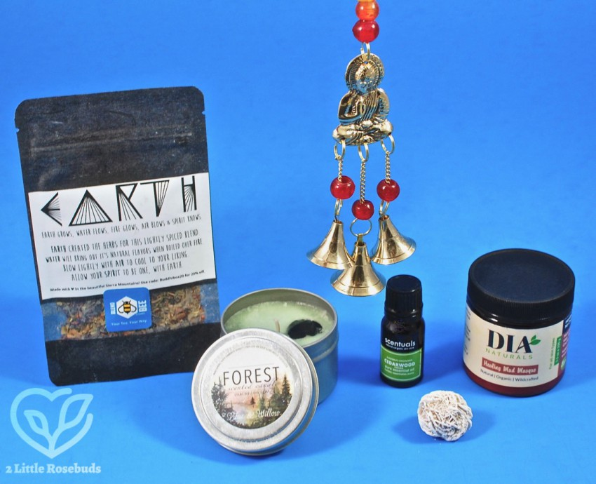 August 2018 BuddhiBox review