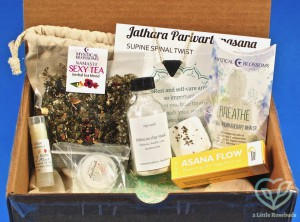 October 2018 Buddhibox review