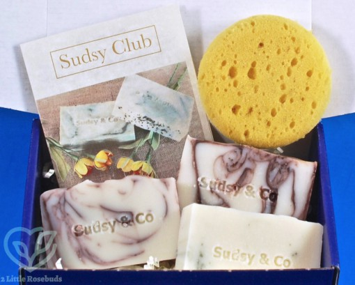 April 2019 Sudsy Club review