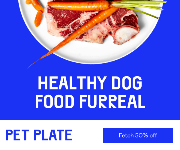 pet plate coupon